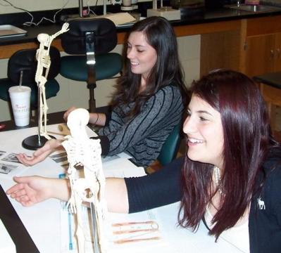 "Students work with ""muscles in clay"" in A&P lab"
